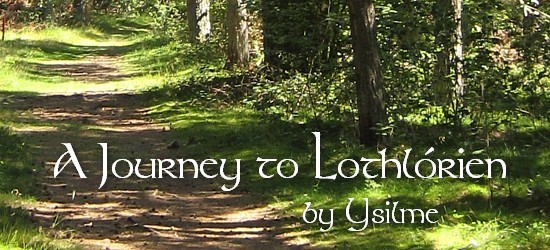 Story Banner with Forest Path